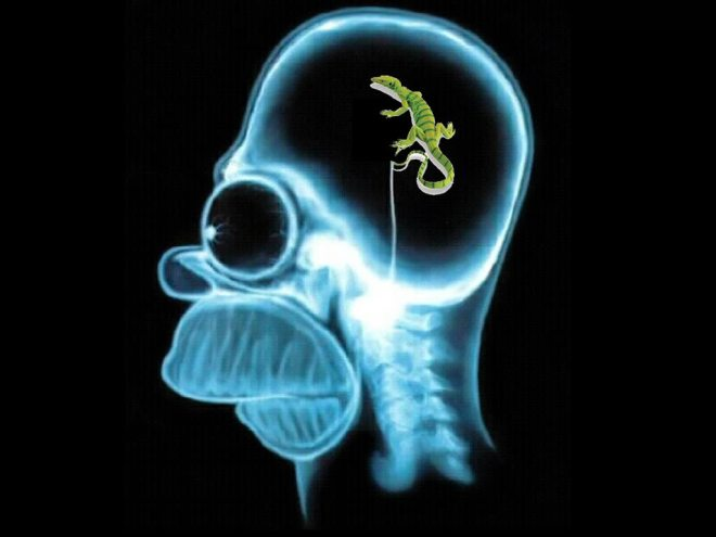homer-simpson-lizard-brain